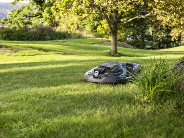 Automower 315 mowing rural garden