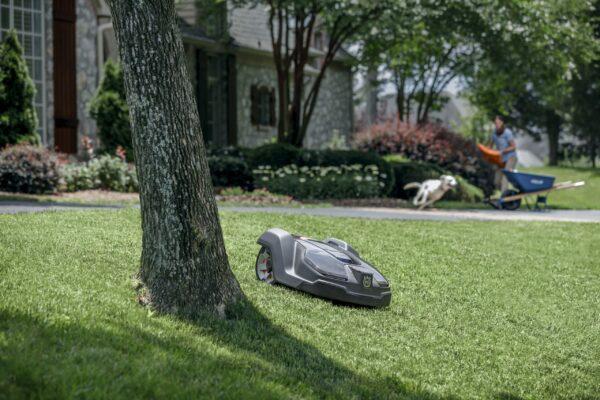 Automower 430X mowing garden with running dog in background