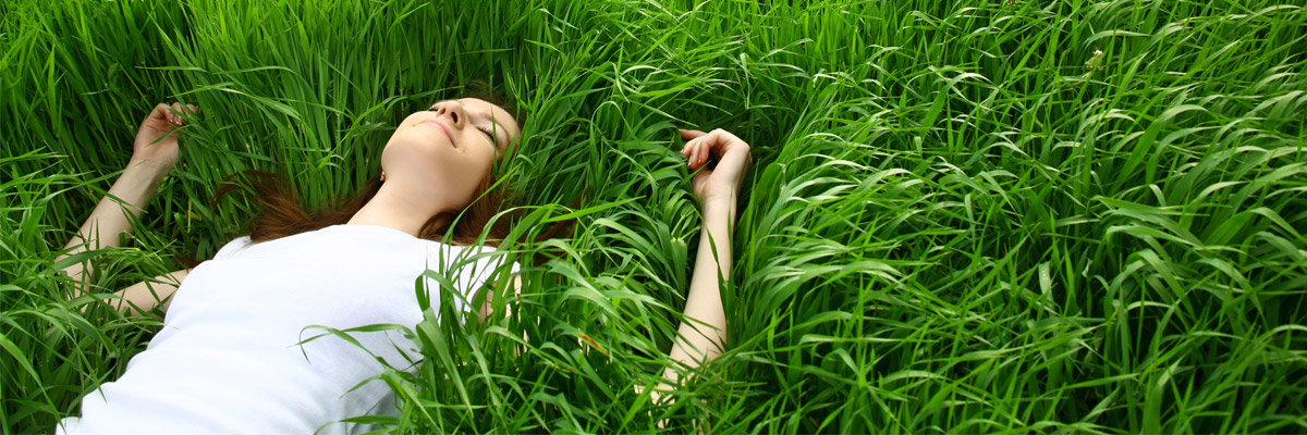 Grass: What you Might not Know!
