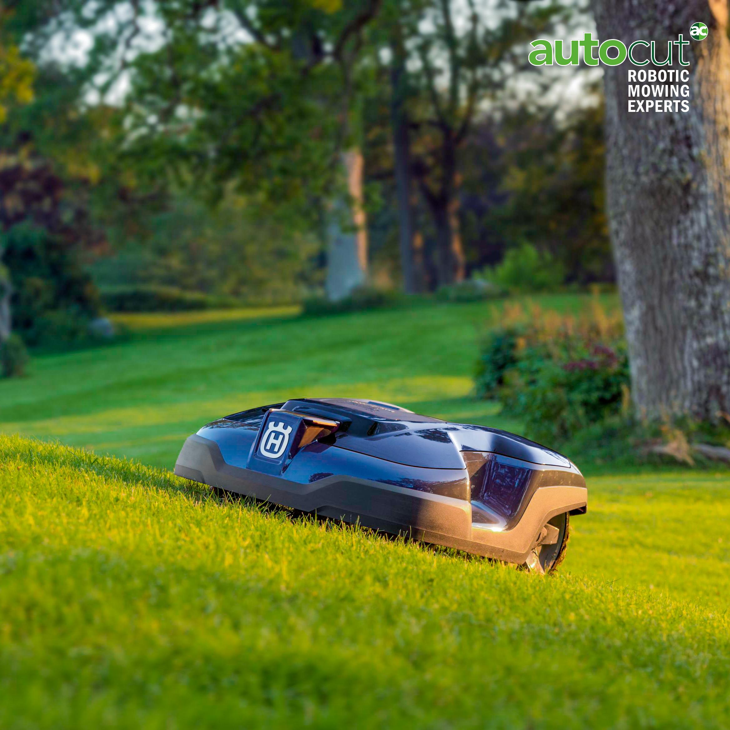 Meet the Mower: Automower® 310