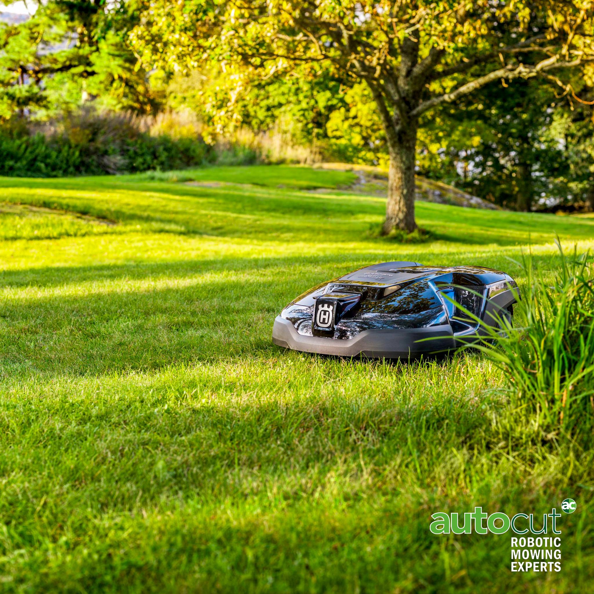 Meet the Mower: Automower® 315
