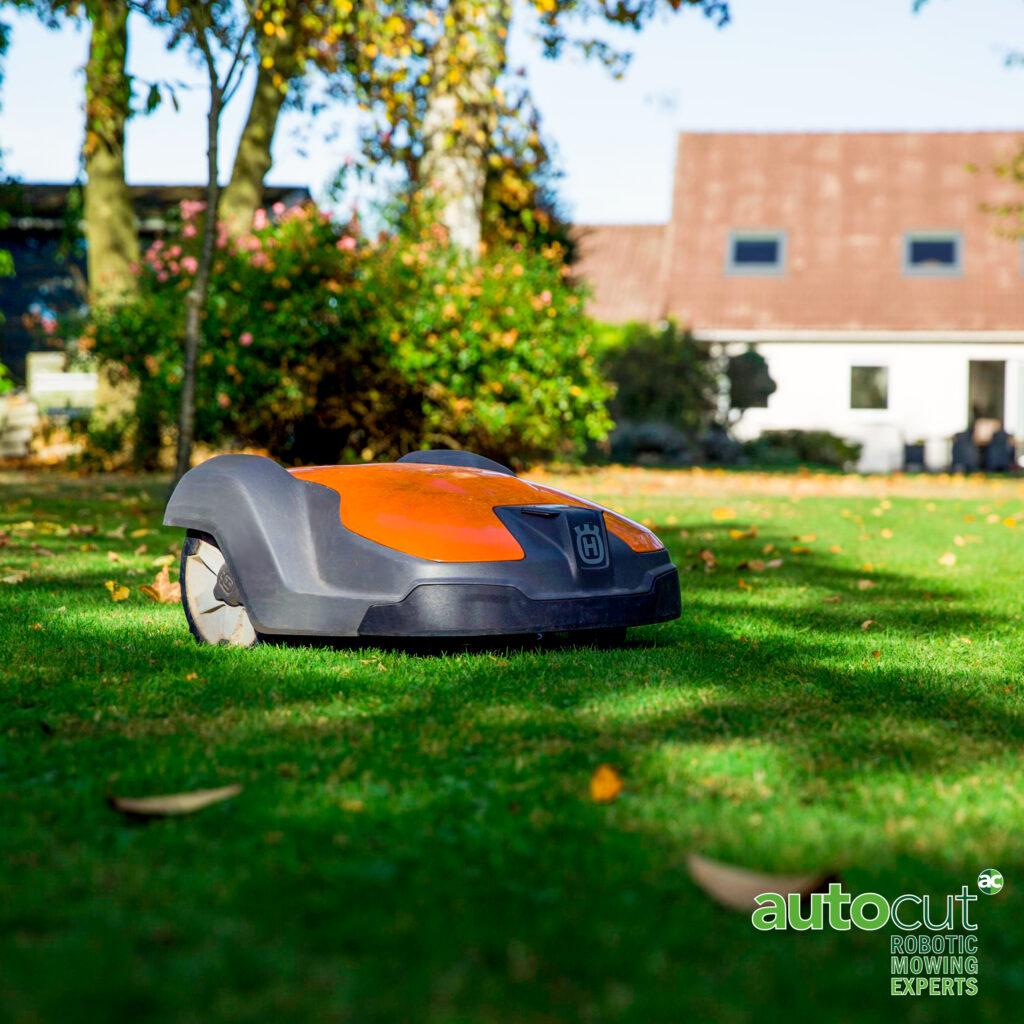 Automower 520 in garden on lawn